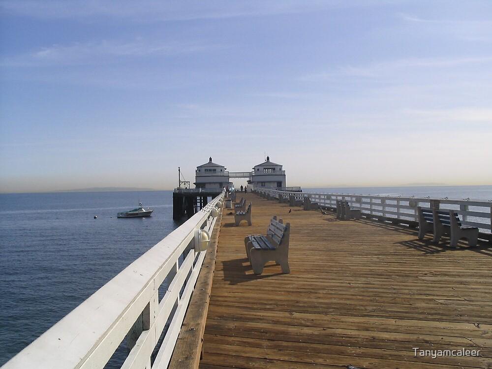 Malibu Pier, U.S.A by Tanyamcaleer