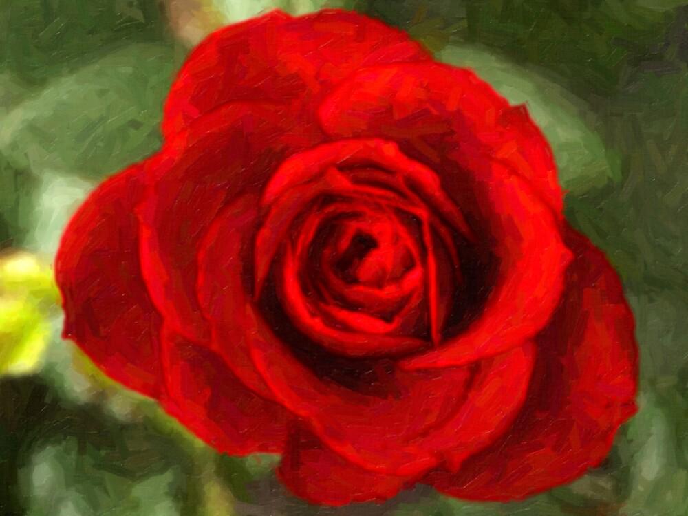 Red Rose Oil   by dduhaime55