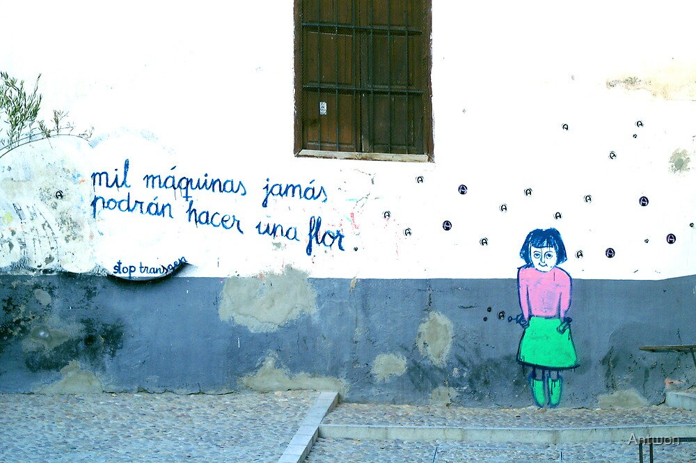 Spanish Street Art by Antwon
