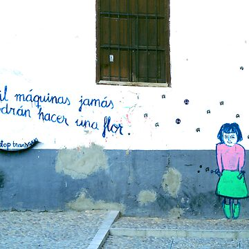 Spanish Street Art by Antwon