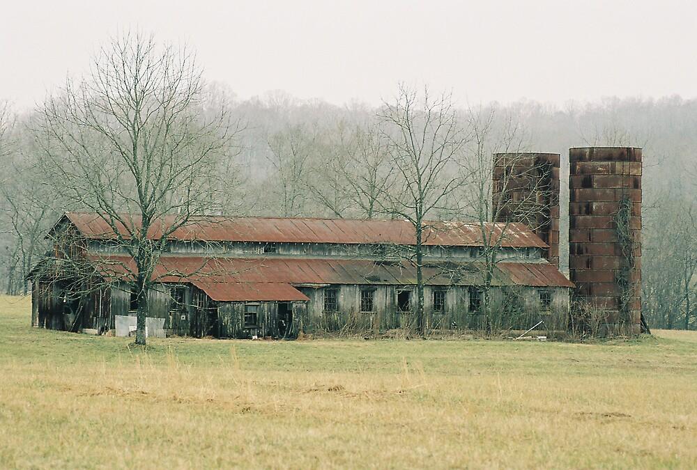 Tennessee Farm by cewoodruff