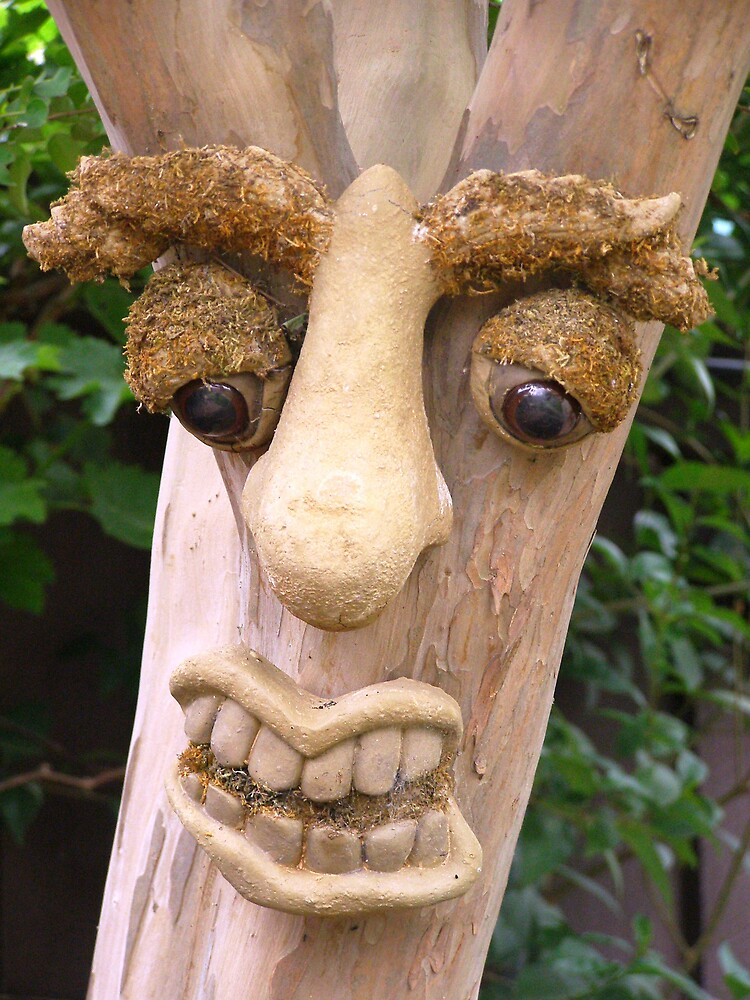 Funny Tree Face by charmaine