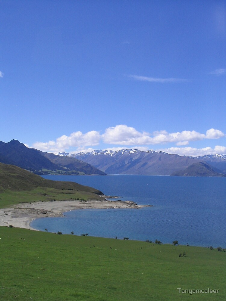Lake Wanaka, New Zealand by Tanyamcaleer