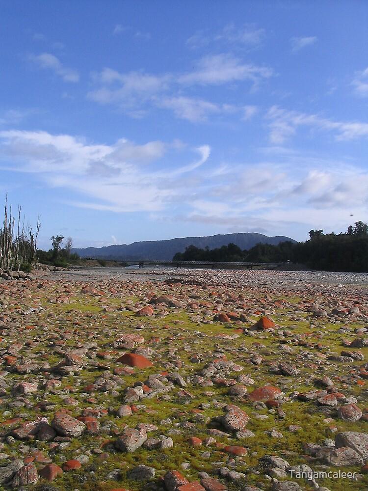 Franz Josef, New Zealand by Tanyamcaleer
