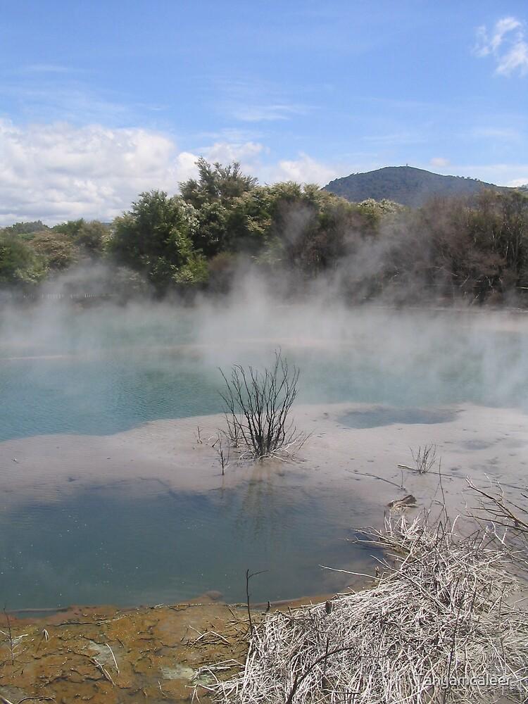 Rotoroa Hot Springs, New Zealand by Tanyamcaleer