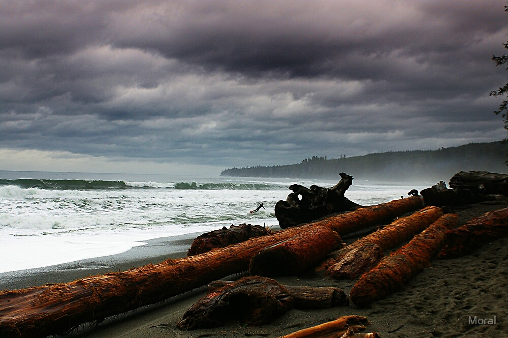 Driftwood and Surf by Ryan Watts