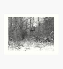 Winter in the South Art Print