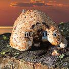 Mushroom Nature House by JonnisArt