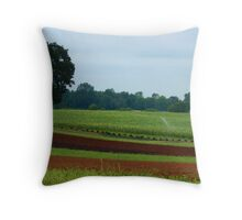 """Contrasts"" Throw Pillow"