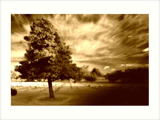Tree of Time by EternalTouchStudios