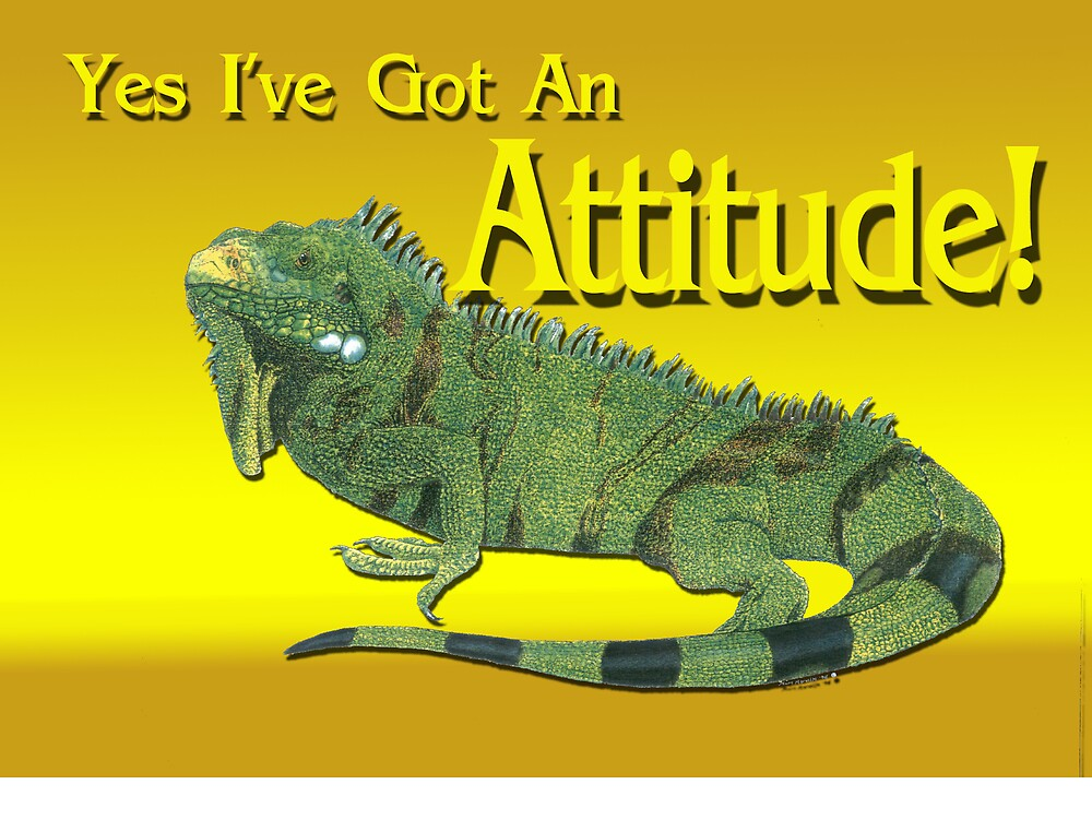 Iguana with an Attitude! by kurtmarcelle