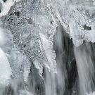 Kamyanka waterfall in winter by Elena Skvortsova