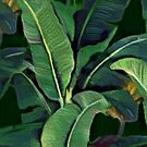 Banana Leaves (painting) by BadBehaviour