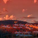 November Sunset Panorama by Herb Spickard
