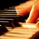 Piano by Edward Shepherd