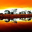 Marlo bush fire reflections by helmutk