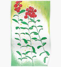Lingonberries vector Poster