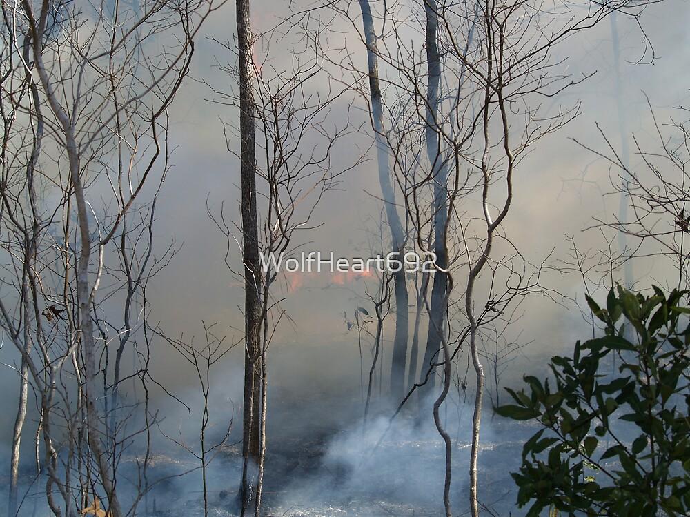 Heavy Smoker by WolfHeart692