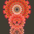 LotusCircles by webgrrl