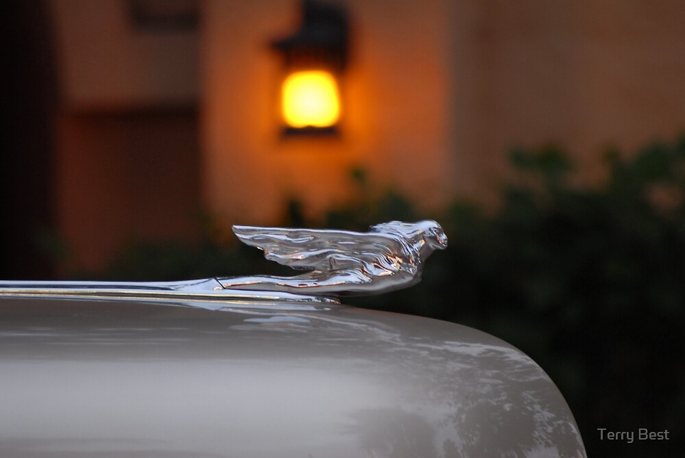 Hood Ornament by Terry Best