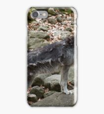 Howling time iPhone Case/Skin