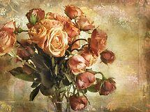 Vintage Bloom by Jessica Jenney