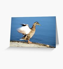 Cleaning Greeting Card