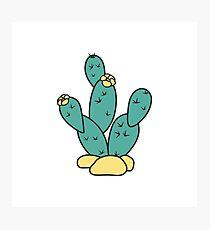 Drawn Cacti Photographic Print
