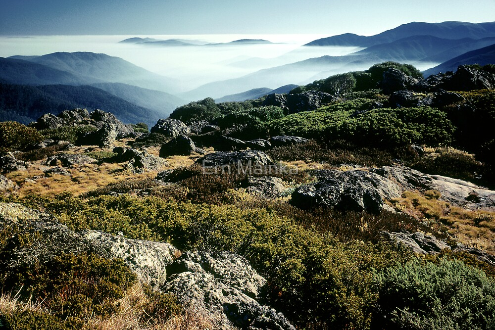 Bogong High Plains by Ern Mainka