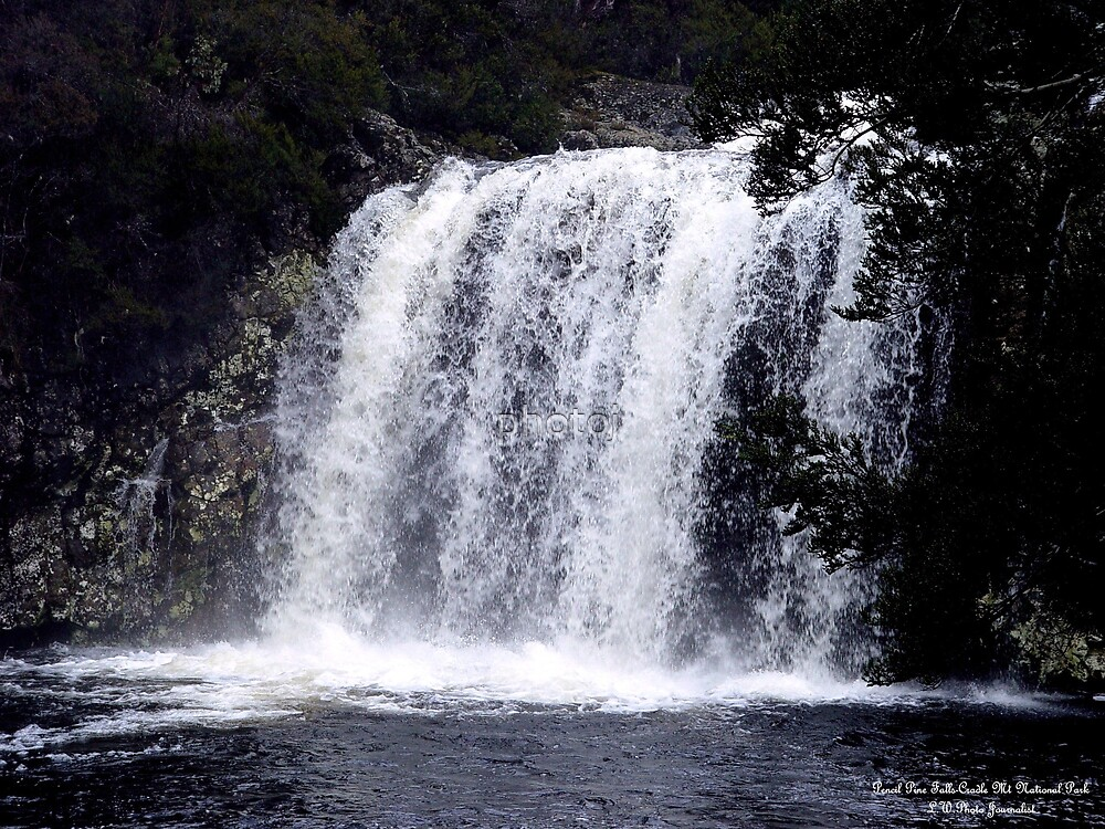 australia-tasmania 'pencil pine falls' by photoj