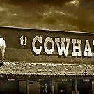 'Cowhand' Colorado. by Melinda Kerr