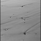 Lines In The Sand... by danielmckinley