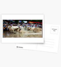 bulb race Postcards