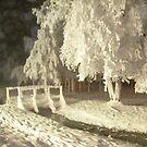 Deep freeze by drewster