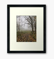 Image one hundred and fourty seven Framed Print