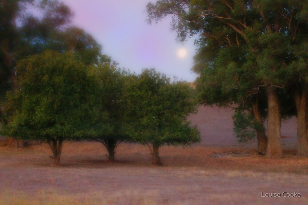 Moon over Maranup by Louise Cooke