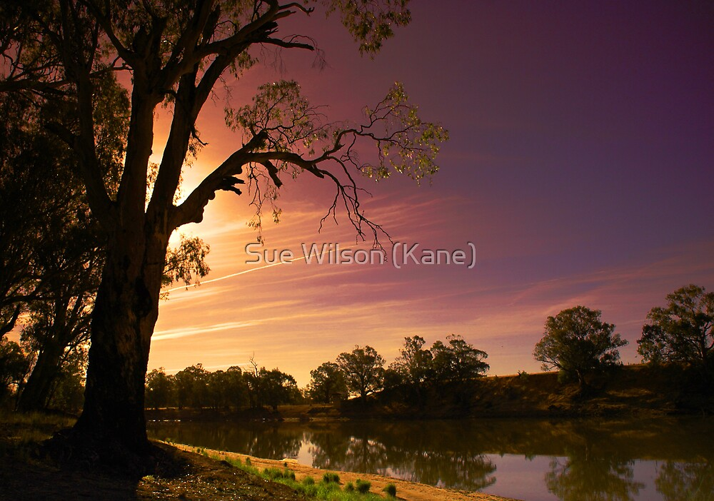 Wemen, Murray River by Sue Wilson (Kane)