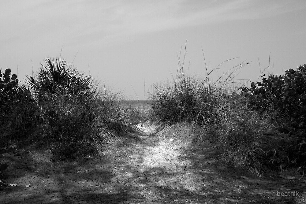 Coquina Beach Path by beatnik