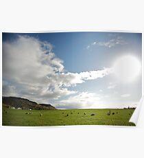 Icelandic Pasture Poster