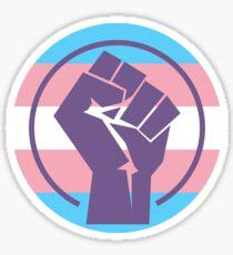 "Resistance Fist ""Trans Flag"" Sticker"
