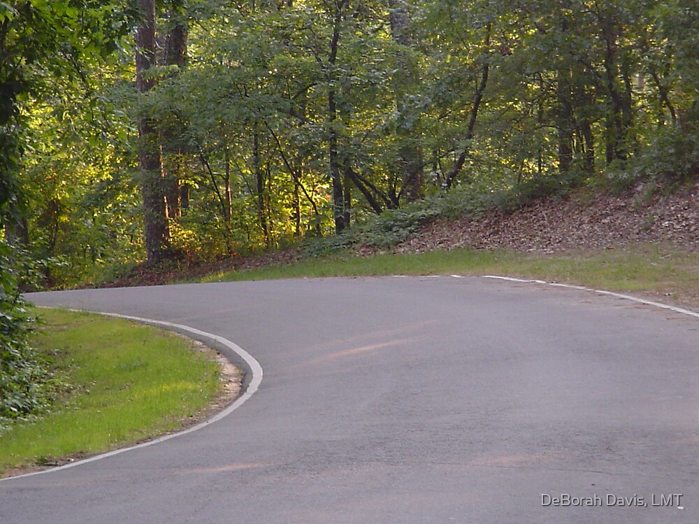 A Road Less Travel by DeBorah Davis, LMT