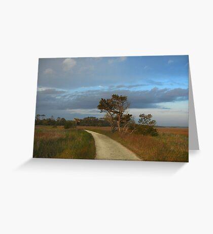 Walk Through Salt Marshes Greeting Card