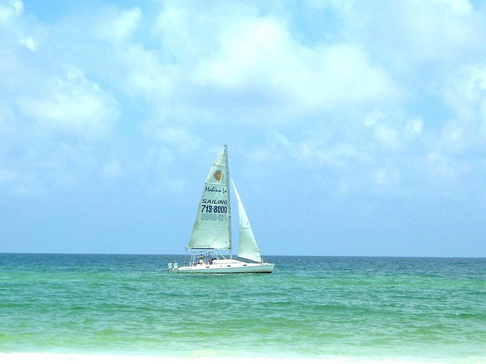 Sailboat by Erika Benoit