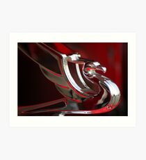 Majestic Hood Ornaments Art Print