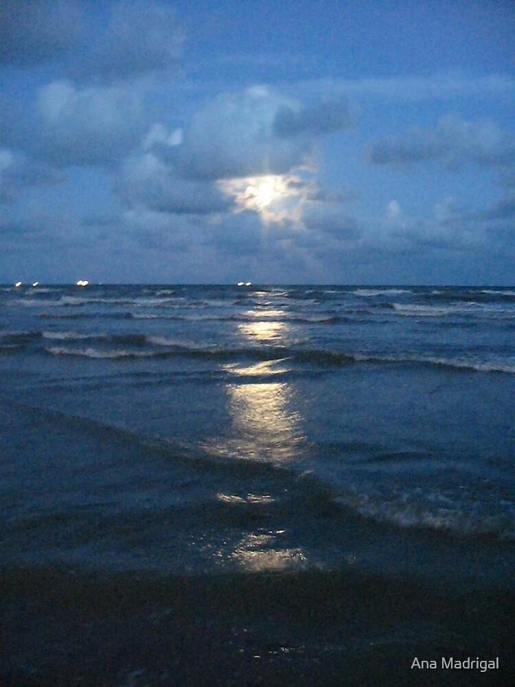 Moonlight Tread by Ana Madrigal