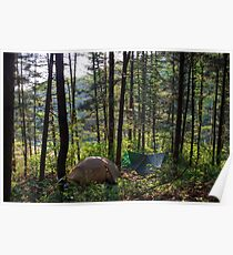 Forest Campsite in Gangwon Province Poster
