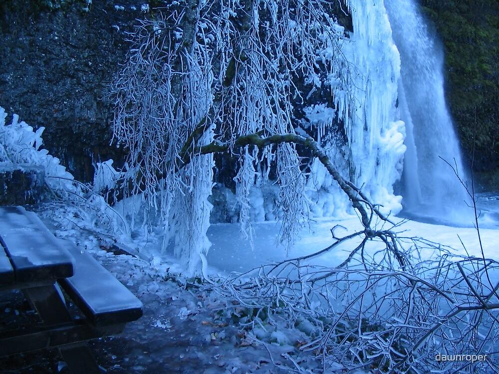 Winter Pause by dawnroper