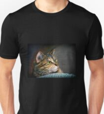 Maine Coon Tabby Cat Artwork Unisex T-Shirt