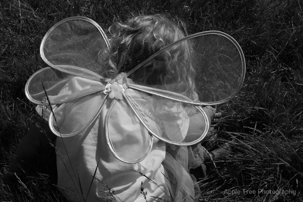 Fairy Wings by Apple Tree Photography