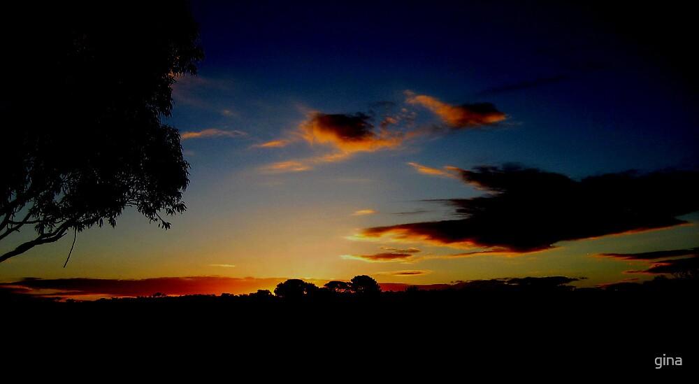 baxter sunset by gina